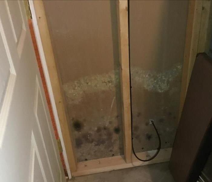 Mold Remediation SERVPRO of West Akron Mold Specialists