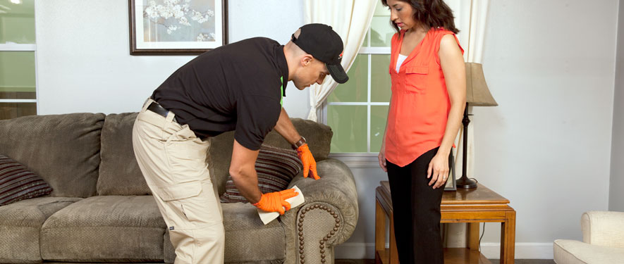 Akron, OH carpet upholstery cleaning